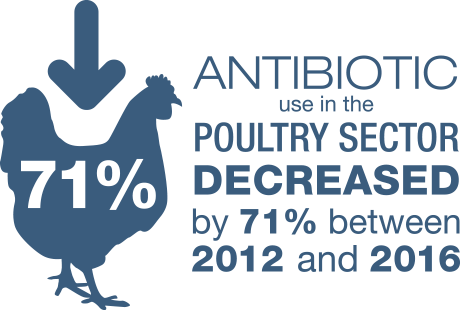 In Antibiotics & UK Farming, antibiotic use in the poultry sector decreased by 71% between 2012 and 2016