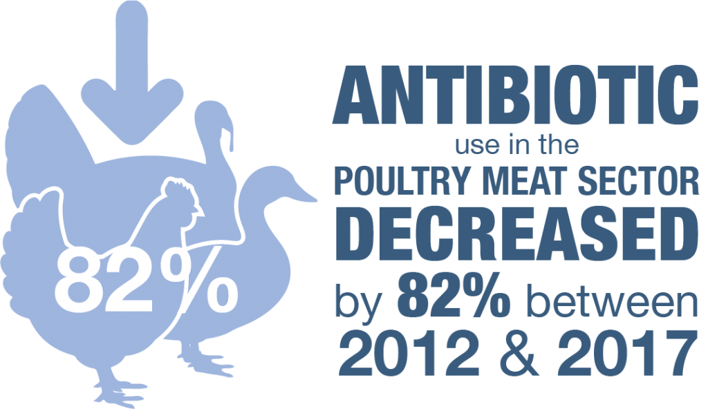 Antibiotic use in the poultry meat sector decreased by 82% between 2012 & 2017